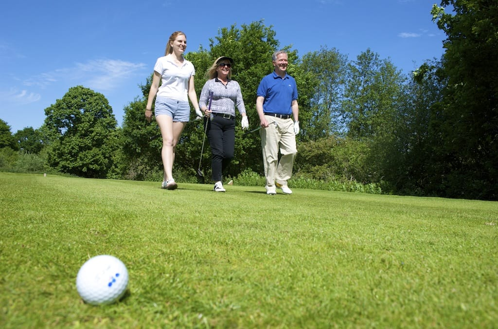 Golf ball Stoke by Nayland