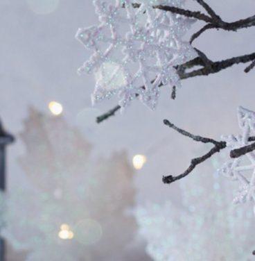 Winter lantern background